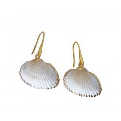 Σκουλαρίκια με κοχύλια   SK00224